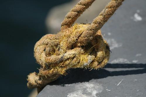 nautical knott