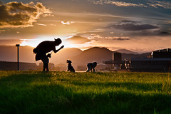 To Higemayuge san... (nasubijutsu) Tags: sunset shadow dogs silhouette japan ball dark hiroshima figure  form outline