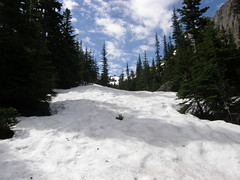 Easy snow on upper Tull Canyon trail.