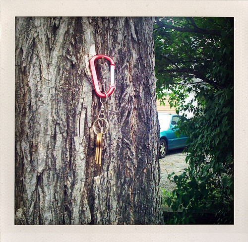 keys hanging on a tree