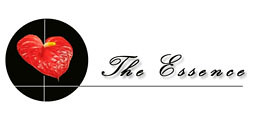 The Essence group