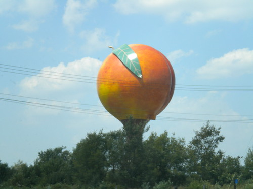 World's biggest peach?