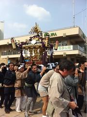 世田谷区民まつりのお神輿行列