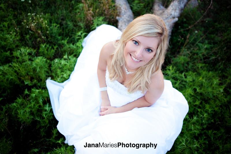 Brown bridal blog015