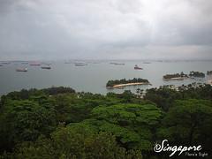 20100718-8 聖淘沙-斜坡滑道VS索道纜車 E-P1 (17) (fifi_chiang) Tags: singapore olympus sentosa ep1 17mm 新加坡 聖淘沙 索道纜車