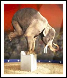 circus-elephant-foot-stand