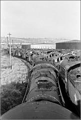 Woodhams Yard (Capt' Gorgeous) Tags: white black film southwales 35mm island steam engines barry 1970s scrap derelict woodhamsyard