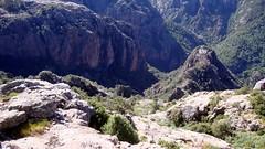 Sentier de descente de Firuletu vers col d'I Cascioni