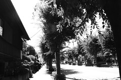 町田樹 画像33