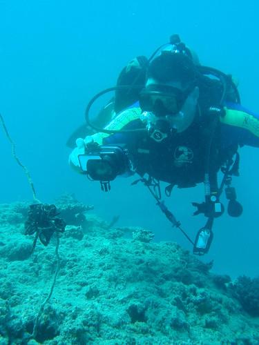 Aventura en Fiji
