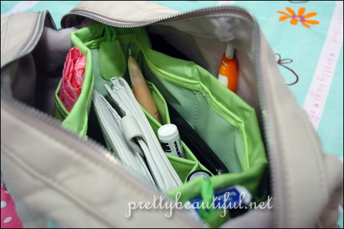 Guardian Bag Organizer in handbag
