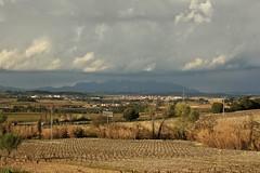 línia de núvols (silviet45) Tags: clouds vineyard lluvia viña catalonia vineyards nubes montserrat catalunya cataluña 2010 weinberg vinya penedès viñas pluja catalogne muntanyes vinyes subirats altpenedès