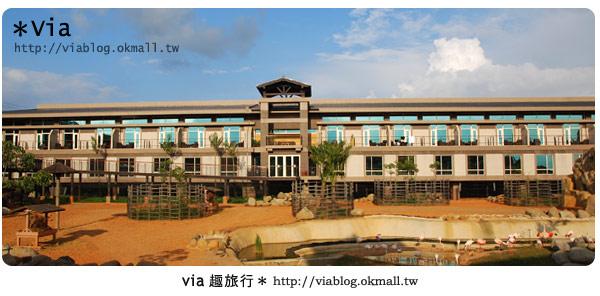 【新竹旅館】關西六福莊生態渡假旅館~餐食篇