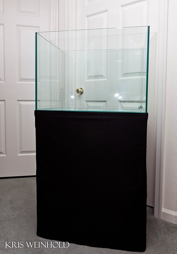 GLA Rimless Aquarium and Custom Stand