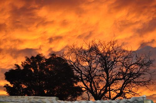 morning sky 3940