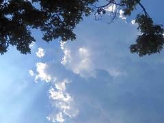 Under An August Cloud