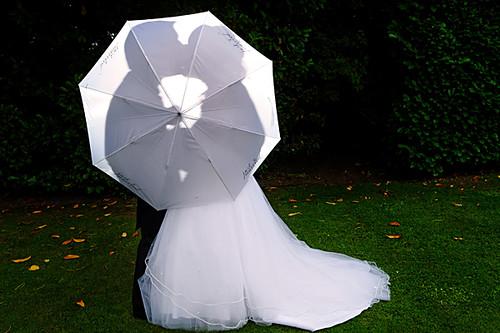An Umbrella Without Rain