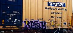 Rash (mightyquinninwky) Tags: railroad graffiti streak tag graf tracks railway tags tagged railcar rails boxcar ladder graff dust graphiti streaks freight fatal isto rash mizu trainart ttx fr8 railart listo whistleblower solv monikers moniker reflectivetape freightcar paintedsteel wreckagekult taggedboxcar paintedboxcar ttxcom paintedrailcar paintedfreight taggedrailcar taggedfreight happybdayleah