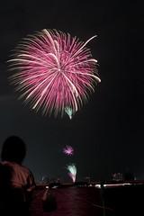 第23回東京湾大華火祭 芯入時計草