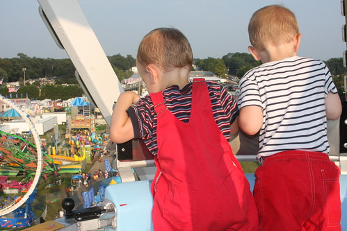 Looking at the Fair