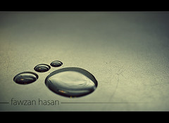Paw (Fawzan Hasan) Tags: sculpture macro reflection water photography paw nikon creative syringe droplet scratch watermark fawzanhasan
