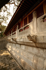 Imperial Gardens 30 (David OMalley) Tags: china city red beauty architecture capital chinese beijing palace forbidden empire imperial  forbiddencity dynasty emperor  grandeur  verbotenestadt citinterdite    verbodenstad cidadeproibida cittproibita yasakehir chineseempire    ipinagbabawalnalungsod cmthnhph