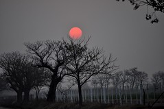 red sun (erbecke) Tags: sunset red argentina