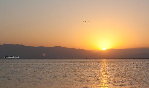 despedim el sol al Delta ~SOOC~