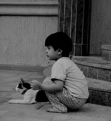 SoSo & OkCat (Emmey) Tags: girls cats pets cute home kids cat children kid kitten soso riyadh saudiarabia ksa girlsworld okcat saroon