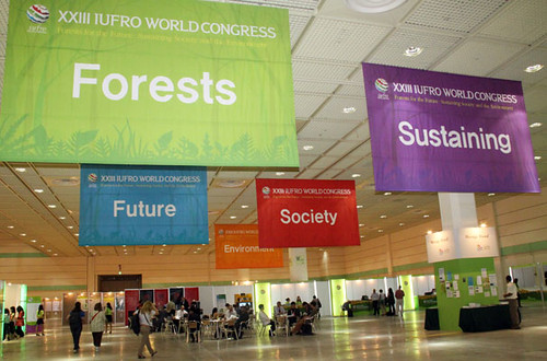 Huge banners extolling the pillars of the IUFRO World Congress greet the 1100-plus attendees to this international gathering in Seoul, Korea. (IUFRO photo)