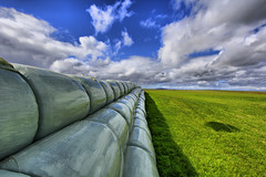Vanishing Point. (alan g 63) Tags: canon vanishingpoint orkney silage cloudscapes holm silagebales colorphotoaward wrappedbales eos550d rebelt2i kissx4 traktoreggs winterfodder
