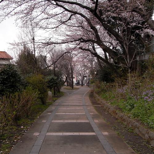 Akabane Pedestrian Path 01