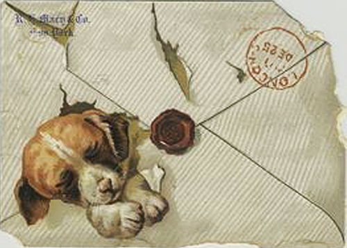 puppy envelope
