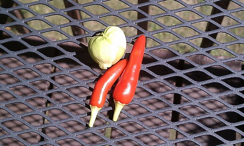 verdes puebla tomatillo & hades hot