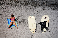 241-365-  Effects of Sunbathing (Paul K.-QuixoteImages) Tags: beach sand surfboards swimsuit wetsuit encinitas dstreet paulknight quixoteimagescom