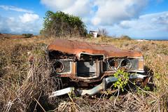 Hybrid (navid j) Tags: abandoned nature car entropy hawaii decay grow vacant bigisland hybrid southpoint