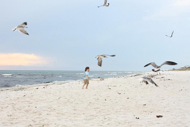 beach29