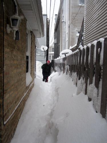 blizzard 076