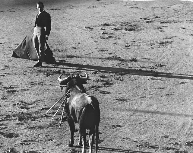 Corrida de Toros en la Plaza de Toledo en 1967. Fotografía de John Fyfe