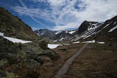 cuntrada muntagnarda (Bergwelt) (Toni_V) Tags: m2404420 rangefinder messsucher leica leicam mp typ240 28mm elmaritm12828asph hiking wanderung randonnée escursione suschflüelapassdavos graubünden grisons grischun unterengadin engiadinabassa flüelapass alps alpen landscape trail wanderweg switzerland schweiz suisse svizzera svizra europe ©toniv 2017 170610
