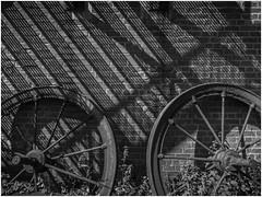 Astley Green Colliery, Lancashire Mining Museum (Pitheadgear) Tags: lancashireminingmuseum astley astleygreen astleygreencolliery coalmining mining coalfield lancashire british coalindustry colliers collieries pits miner miners colliery pitmen industrialhistory history houiller bergmann minedecharbon houille puitsdecharbon kohlenpott steinkohlenzeche steinkohlenbergwerk steinkohlenbergbau minesdecharbon charbonnage schachtanlage bergwerk bergbau fördergerüst förderturm pütt pithead headframe headgear headstock mineheads chevalement fosse kopalnia mijn mina szyb dul schacht puitsdemines industry industrie industria blackandwhite bw mono monochrome