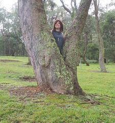 Hide And Seek (justplainrachel) Tags: justplainrachel rachel cd tv crossdresser tgirl transgender trans tranny hiding tree outdoors grey dress selfir selfportrait frock tunic uniform