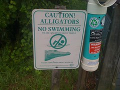 No Swimmimg