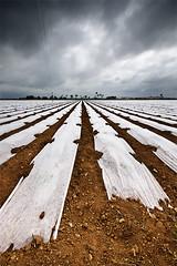The Food of the Future (DavidFrutos) Tags: food landscape paisaje murcia filter nd alfa alpha filters filtro sigma1020mm filtros losalczares neutraldensity alonsodr sonydslr losnarejos densidadneutra davidfrutos 700 singhraygalenrowellnd3ss