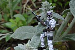 Trooper Day Afternoon (skipthefrogman) Tags: trooper fun toy star team action joe adventure figure wars clone gi hasbro skipthefrogman