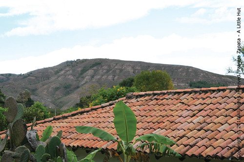 Colombia - taken from the backyard of a friend's country home