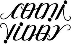 """Cami"" & ""Vinny"" Ambigram"