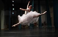 Ballet concert in Yerevan