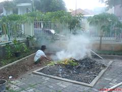 Bakaran (mang_endi) Tags: burnt api rumah lelaki asap tanaman sampah union49seasonsphotosflickrcom