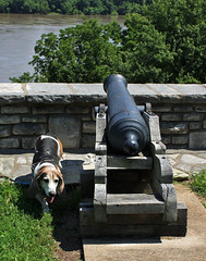 Jake with Cannon